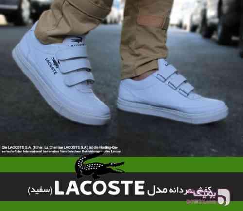 https://botick.com/product/131663--کفش-مردانه-Lacoste