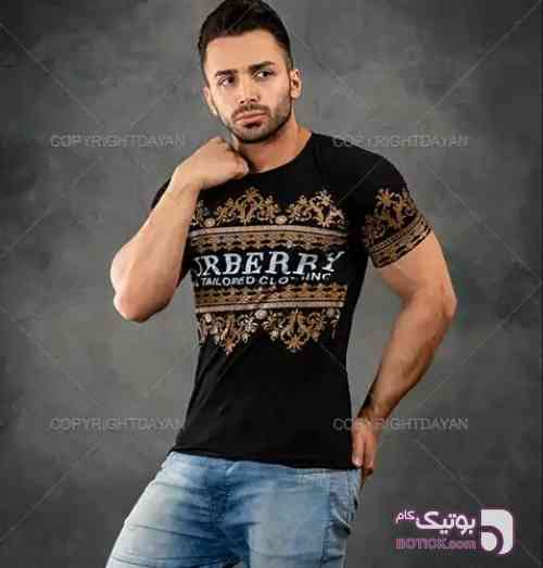 https://botick.com/product/169643-تیشرت-مردانه-#Larnoz