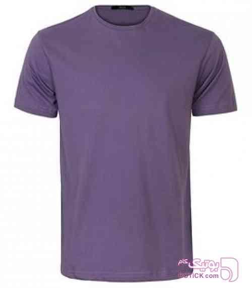 https://botick.com/product/170635-تی-شرت-یقه-گرد-ساده-مردانه