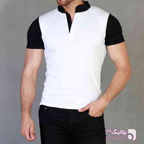 https://botick.com/product/178021-تی-شرت-مردانه-White