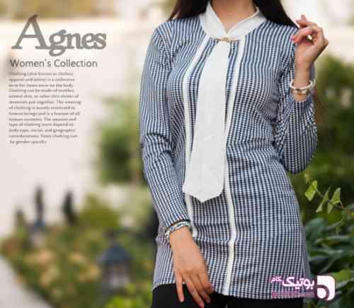 https://botick.com/product/283905-تونیک-زنانه-مدل-Agnes-