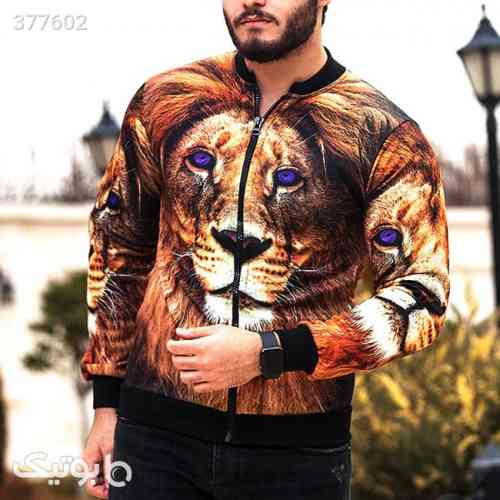 https://botick.com/product/377602-سویشرت-مردانه-مدل-Lion