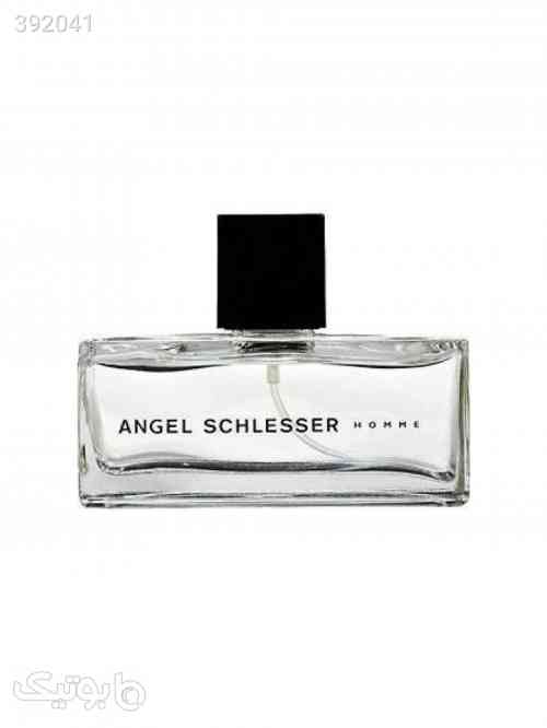 https://botick.com/product/392041-عطر-مردانه-آنجل-شلیسر-مدل-Angel-Schlesser-Hommeحجم125-میل
