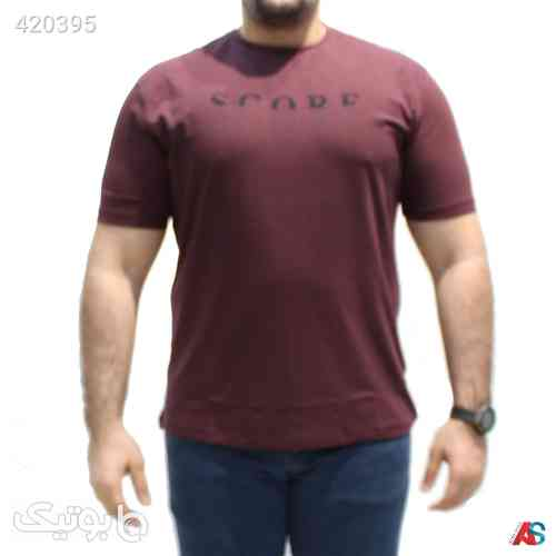 https://botick.com/product/420395-تیشرت-سایز-بزرگ-کد-محصولRO021