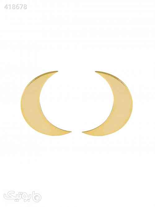 https://botick.com/product/418678-گوشواره-طلا-18-عیار-مدل-GM01