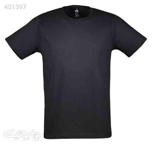 https://botick.com/product/451397-تی-شرت-مردانه-آگرین-مدل-1431200-99
