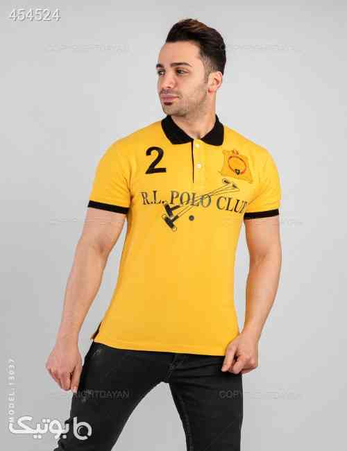 https://botick.com/product/454524-پولوشرت-مردانه-Polo-مدل-13037