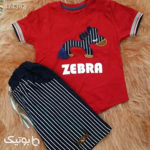 تیشرت و شلوارک zebra قرمز 99 2020