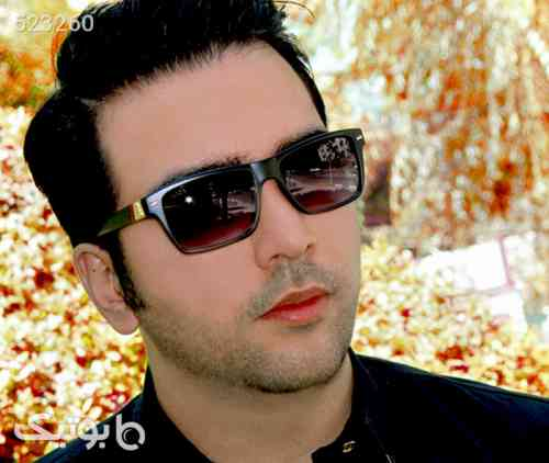 https://botick.com/product/523260-عینک-آفتابی-مردانه-پولو-مدل-f4
