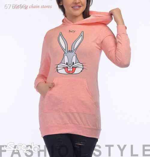 https://botick.com/product/675293-هودی-طرح-خرگوش