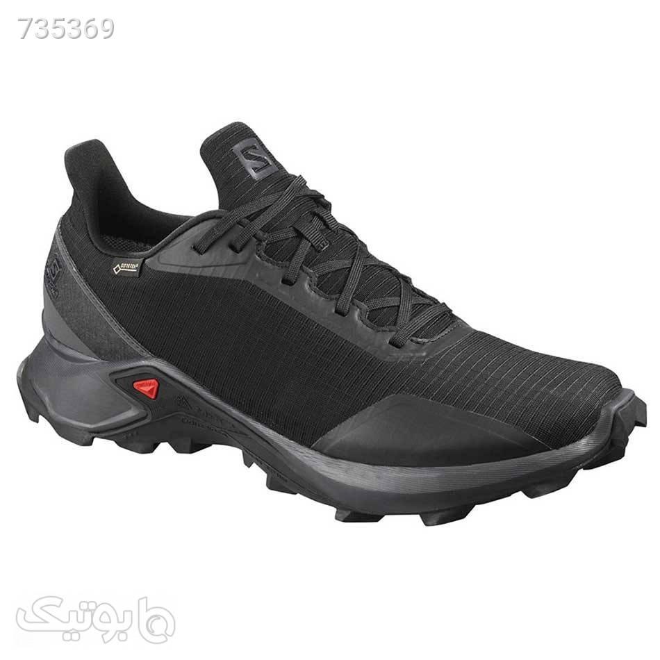 کفش رانینگ مردانه سالومون مردانه Salomon Alphacross Gtx مشکی كتانی مردانه