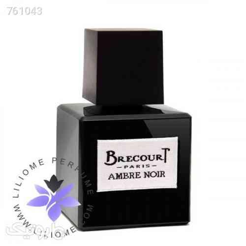 https://botick.com/product/761043-عطر-ادکلن-برکورت-امبر-نویر- -Brecourt-Ambre-Noir