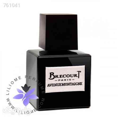 https://botick.com/product/761041-عطر-ادکلن-برکورت-اونیو-مونتین-|-Brecourt-Avenue-Montaigne