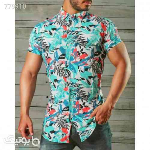 https://botick.com/product/779910-پیراهن-هاوایی-