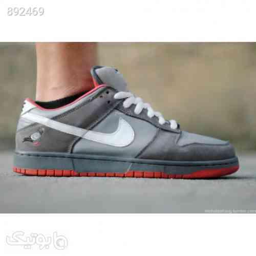 https://botick.com/product/892469-کفش-اصلی-نایک-اس-بی-دانک-کبوتر-Nike-SB-Dunk-Low-Pigeon