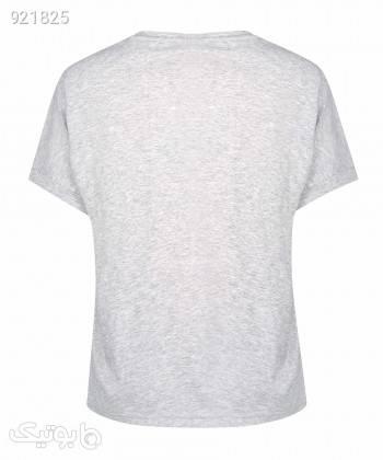 تیشرت زنانه جین وست Jeanswest کد 02273509 نقره ای تی شرت زنانه