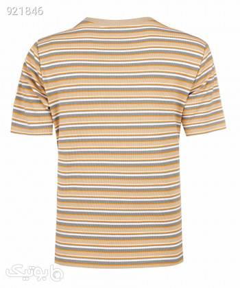 تیشرت پاییزه زنانه جین وست Jeanswest کد 01273505 کرم تی شرت زنانه
