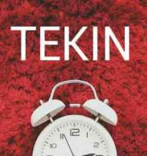 tekin-logo