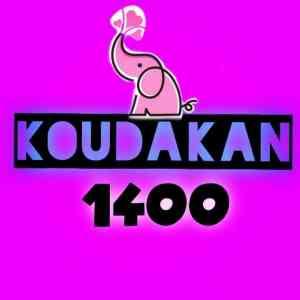 Kodakan1400