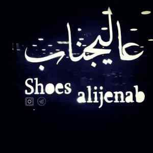 کفش عالیجناب